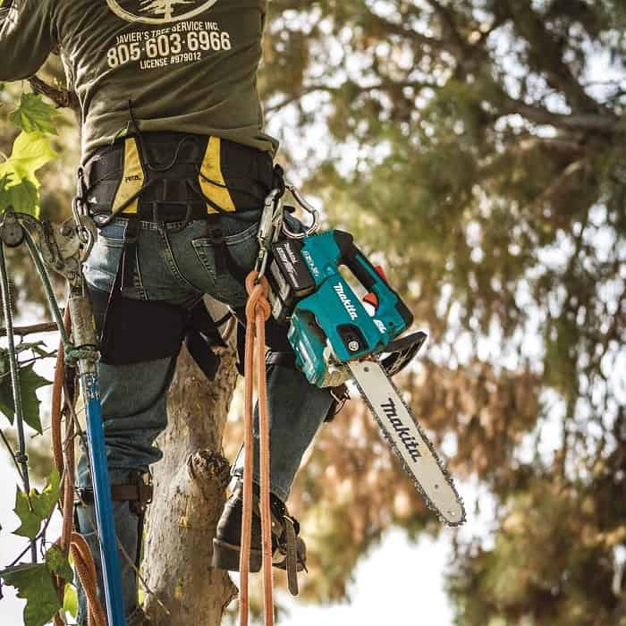 Cordless Makita Chain Saw Up Tree