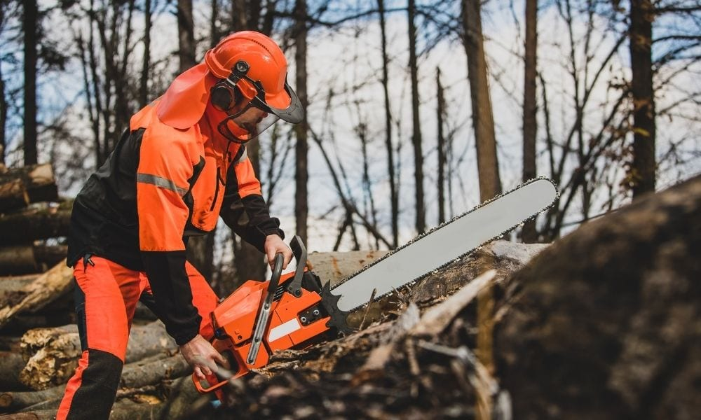 Using face sheild with chainsaw