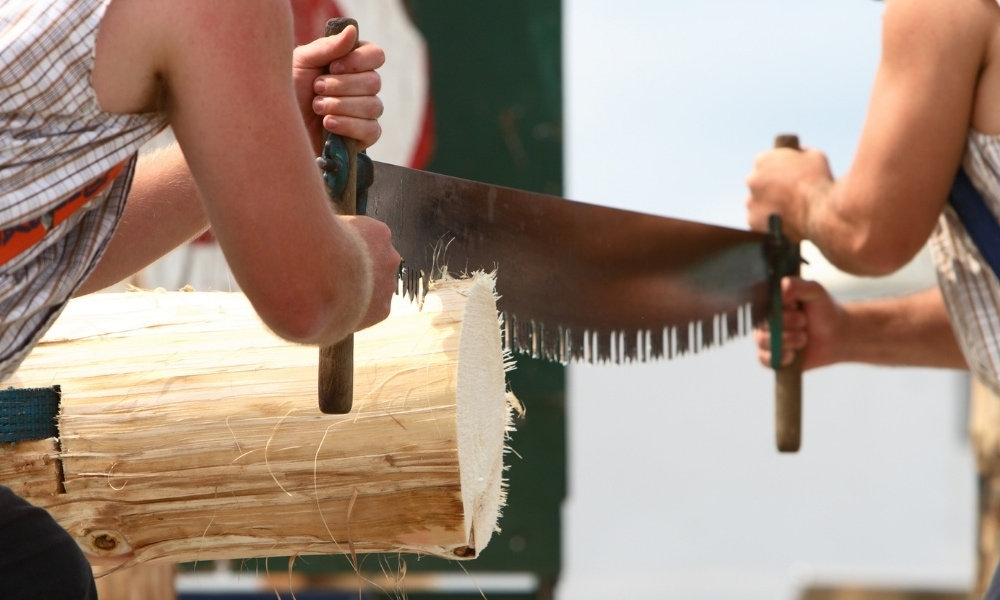 Cross cut saw for cutting woods