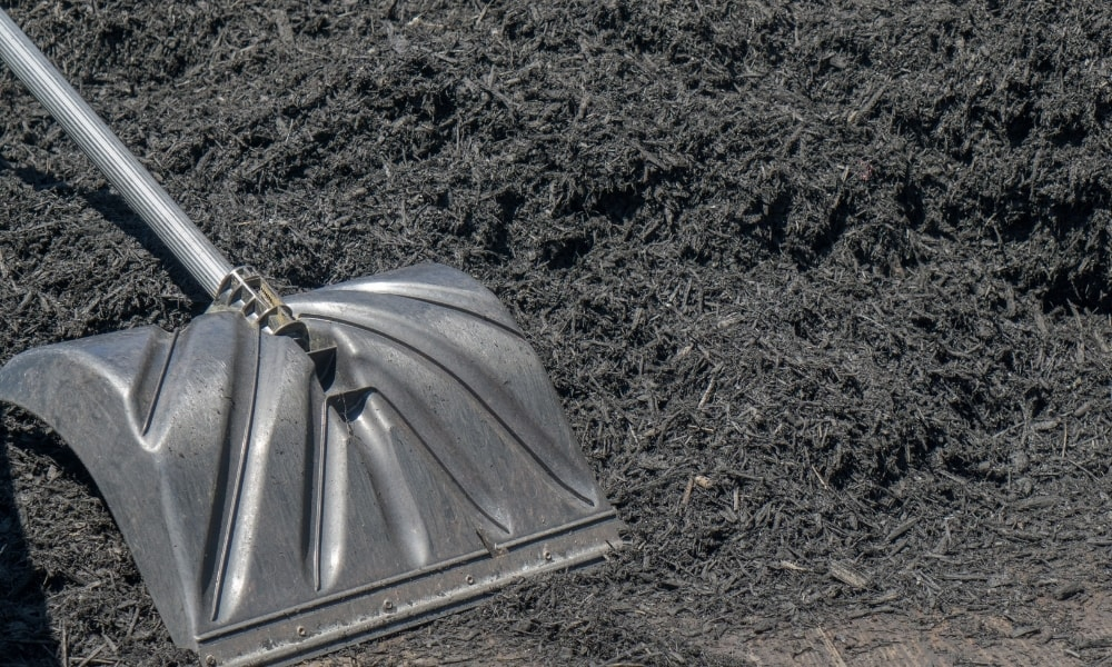 A mulch shovel over a pile of compost